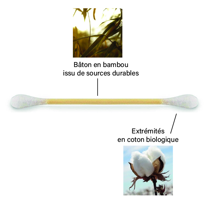 description coton tige