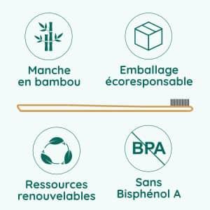 infographie brosses à dents